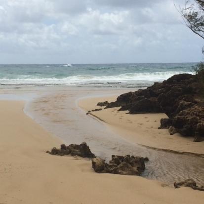 Kauai_WaipiliStreamFinal